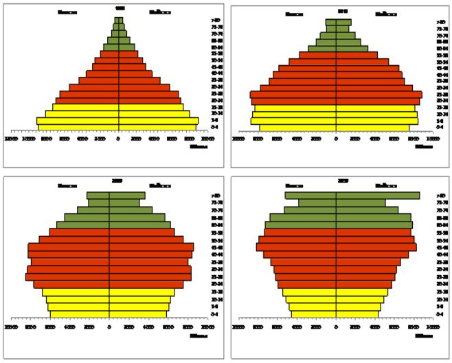 Pirâmide Social Brasil - 1990 e 2010, e estimados 2030 e 2060. (Fonte: IBGE)